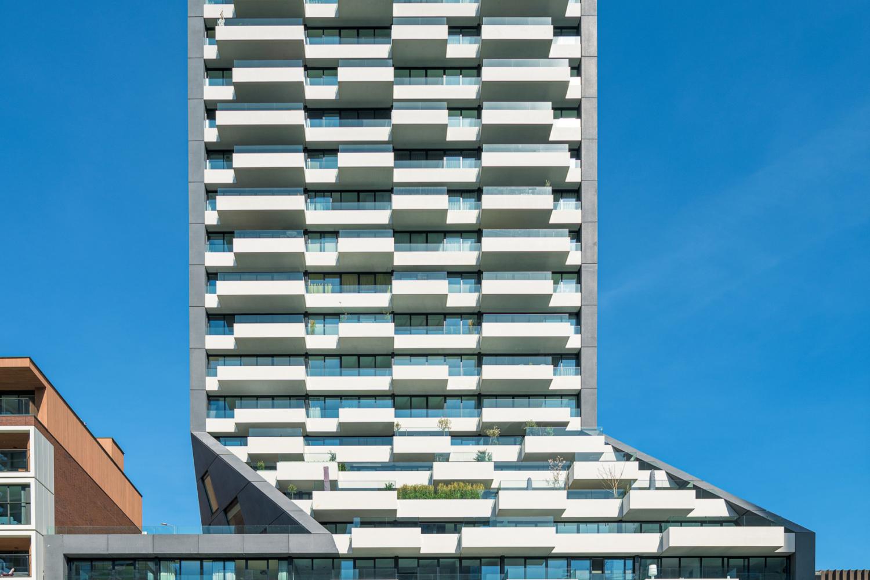 Rotterdam, The Muse 6